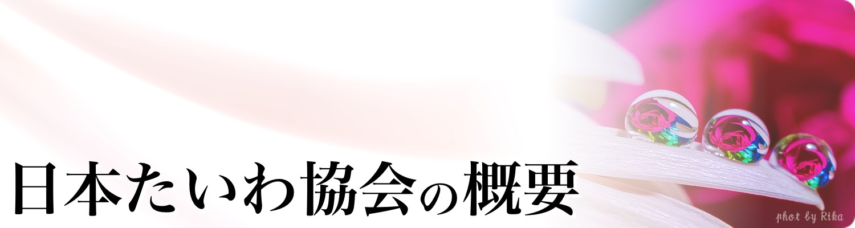 日本たいわ協会の概要